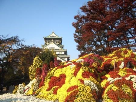 関西文化の日 大阪城に行ってきました♪