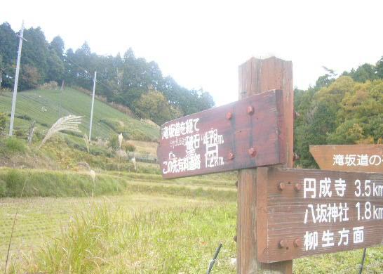 自然を求めて奈良の山へGO!